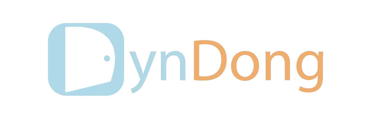 Startups DynDong. BusinessInFact